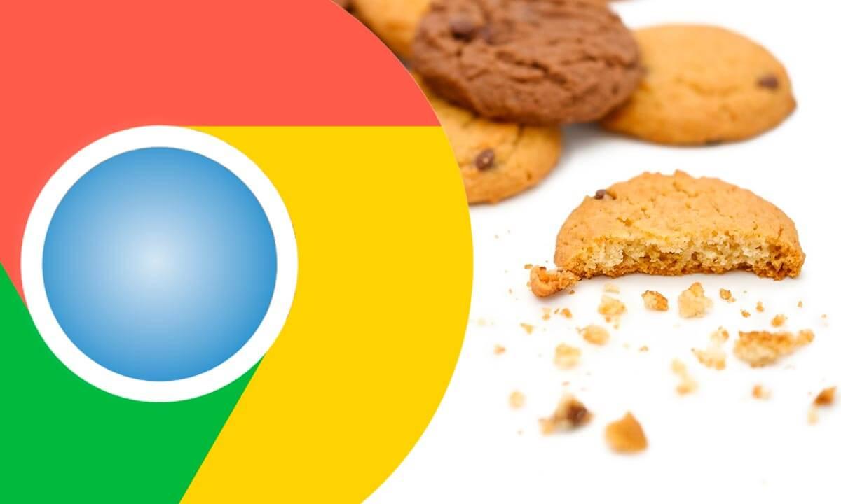 Проблемы с Google FLoC? | Google SEO, Фото № 1 - google-seo.pro