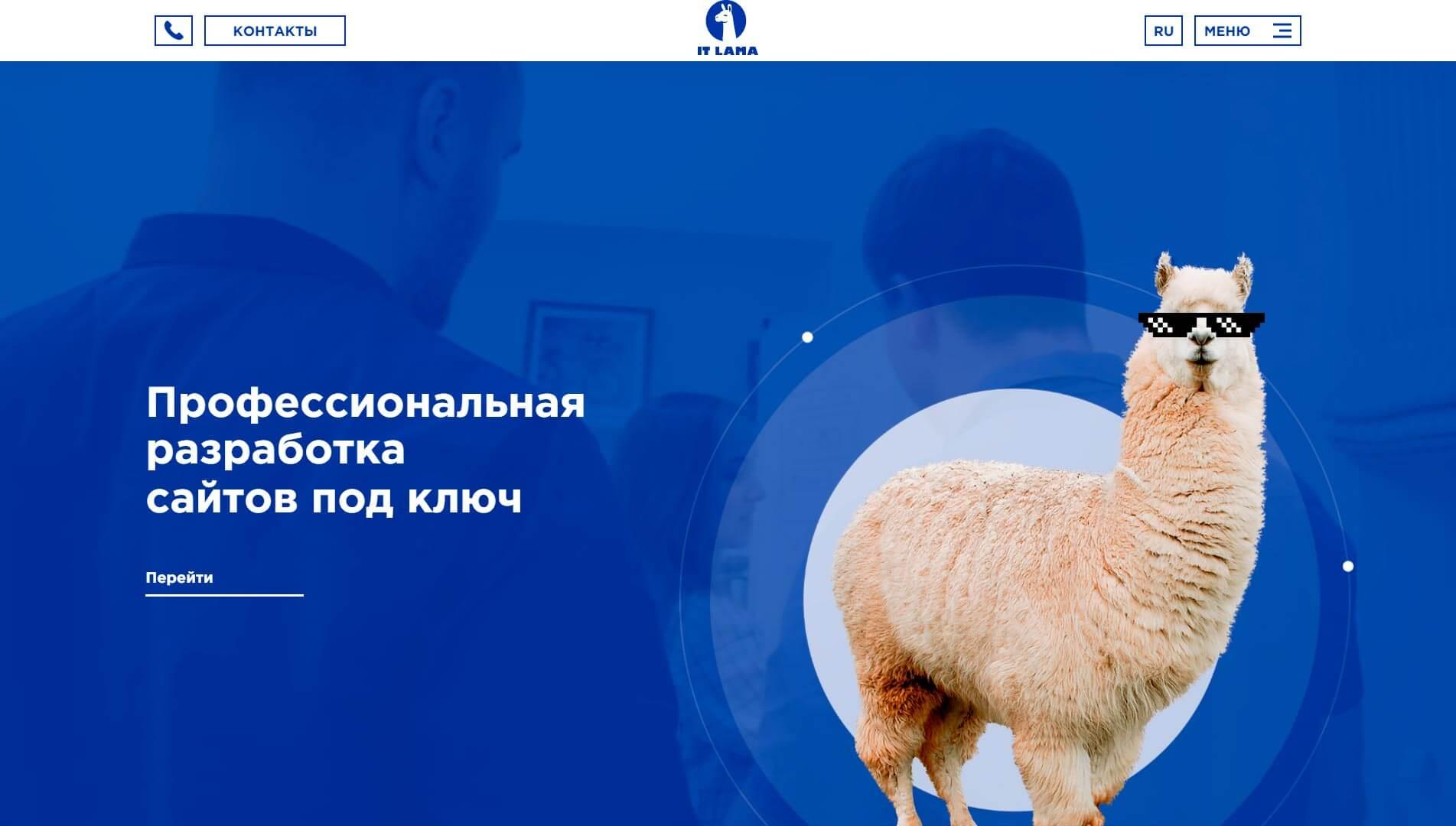 IT LAMA - обзор компании, услуги, отзывы, клиенты | Google SEO, Фото № 1 - google-seo.pro