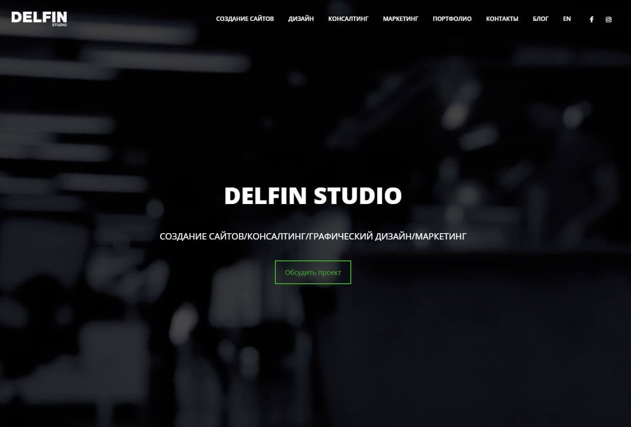 Delfin Studio - обзор компании, услуги, отзывы, клиенты, Фото № 1 - google-seo.pro