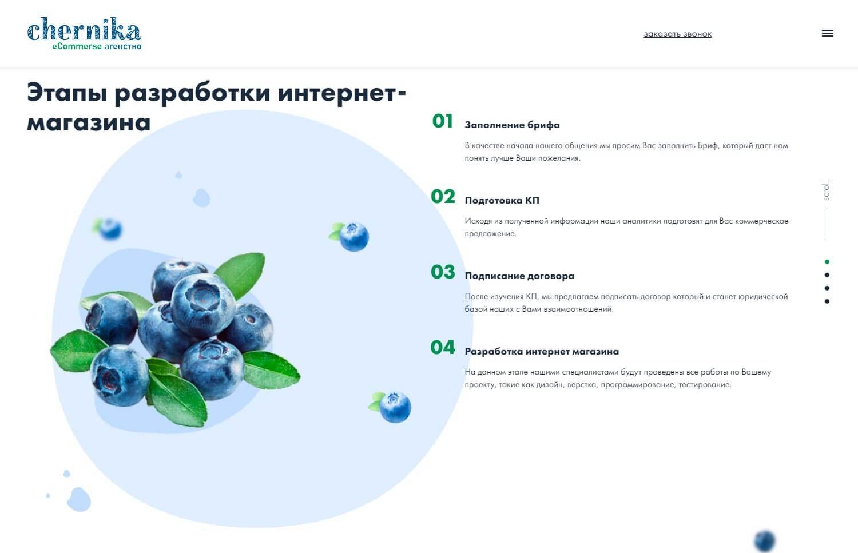 chernika - обзор компании, услуги, отзывы, клиенты, Фото № 2 - google-seo.pro
