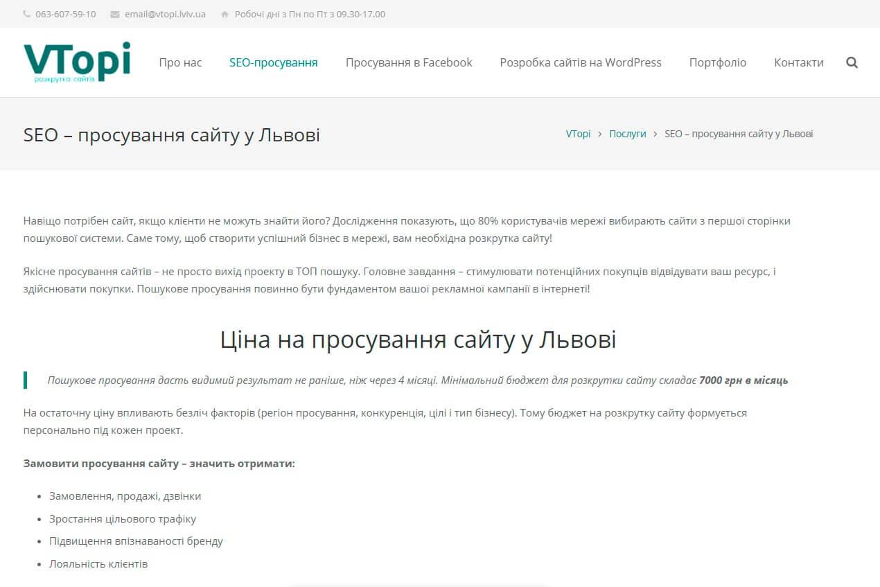 VTopi - обзор компании, услуги, отзывы, клиенты | Google SEO, Фото № 2 - google-seo.pro