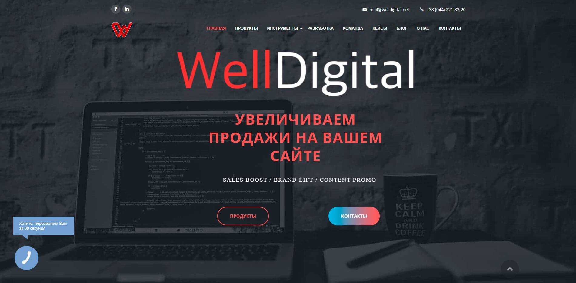WellDigital - обзор компании, услуги, отзывы, клиенты   Google SEO, Фото № 1 - google-seo.pro