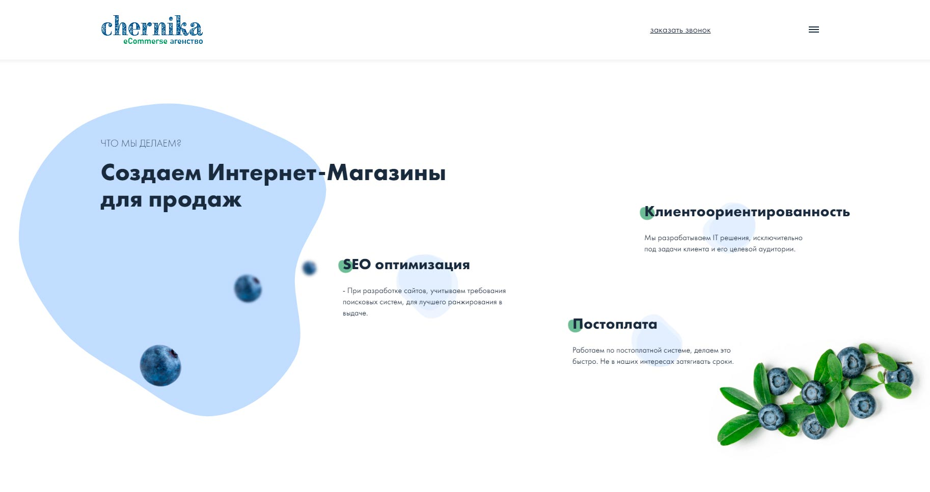 chernika - обзор компании, услуги, отзывы, клиенты, Фото № 1 - google-seo.pro
