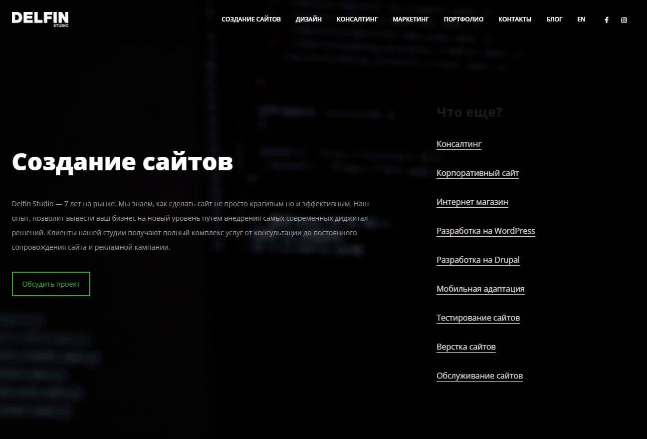 Delfin Studio - обзор компании, услуги, отзывы, клиенты, Фото № 2 - google-seo.pro